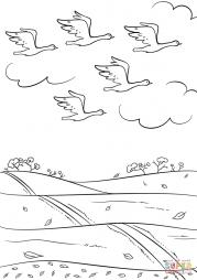 Осенью птицы улетают на юг