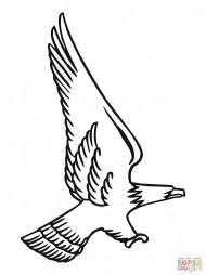 Нападение белоголового орлана