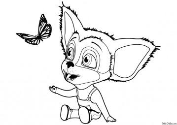 Малыш Барбоскин и бабочка