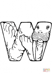 W is for Walrus