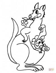 Кенгуру-мама и крошка-кенгуру