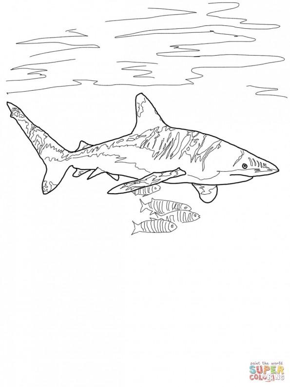 Раскраска Длиннокрылая акула, распечатать или скачать из ...