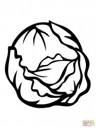 Кудрявая капуста