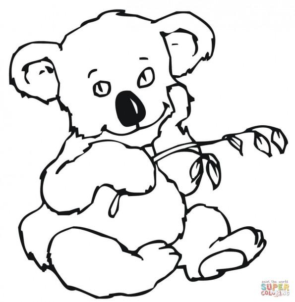 Раскраска Крошка коала и эвкалиптовые листья, распечатать ...