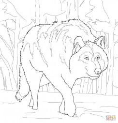 Крадущийся волк