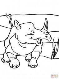 Весёлый носорог