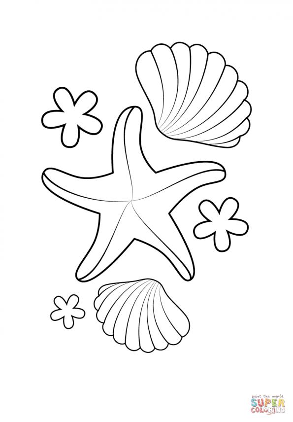 новости, рисунок ракушек и морских звезд мужской