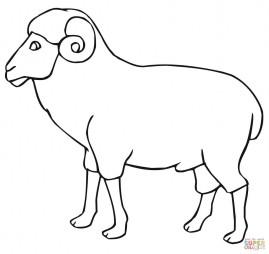 Баран (контурное изображение)