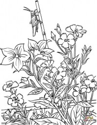 Кузнечик в саду
