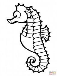 Рыба морской конёк