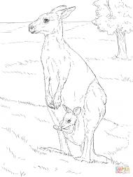Гигантский кенгуру с детёнышем