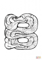 B is for Boa