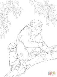 Макака со своим детенышем
