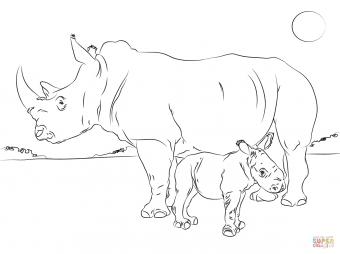 Носорожек с носорогом-мамой