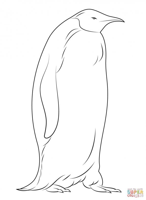 Раскраска пингвин. Распечатать картинки с пингвинами. | 816x595