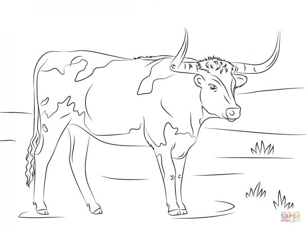 Раскраска Длиннорогая корова, распечатать или скачать из ...
