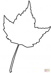 Контурый рисуннок клинового листика