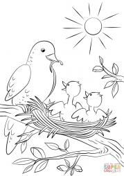 Птица кормит птенцов