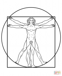 Витрувианский человек, рисунок Леонардо да Винчи