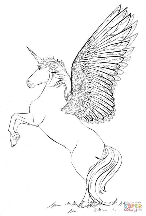 Раскраска Единорог с крыльями, распечатать или скачать из ...