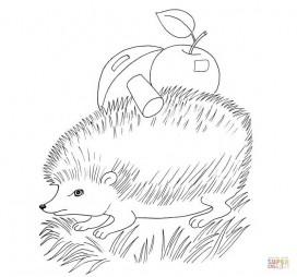 Ёжик с яблоками и грибами