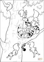 Тигра играет с белками