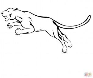 Горный лев в атаке