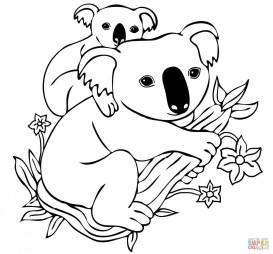 Медвежонок-коала на спине матери