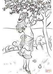Девочка собирает яблоки